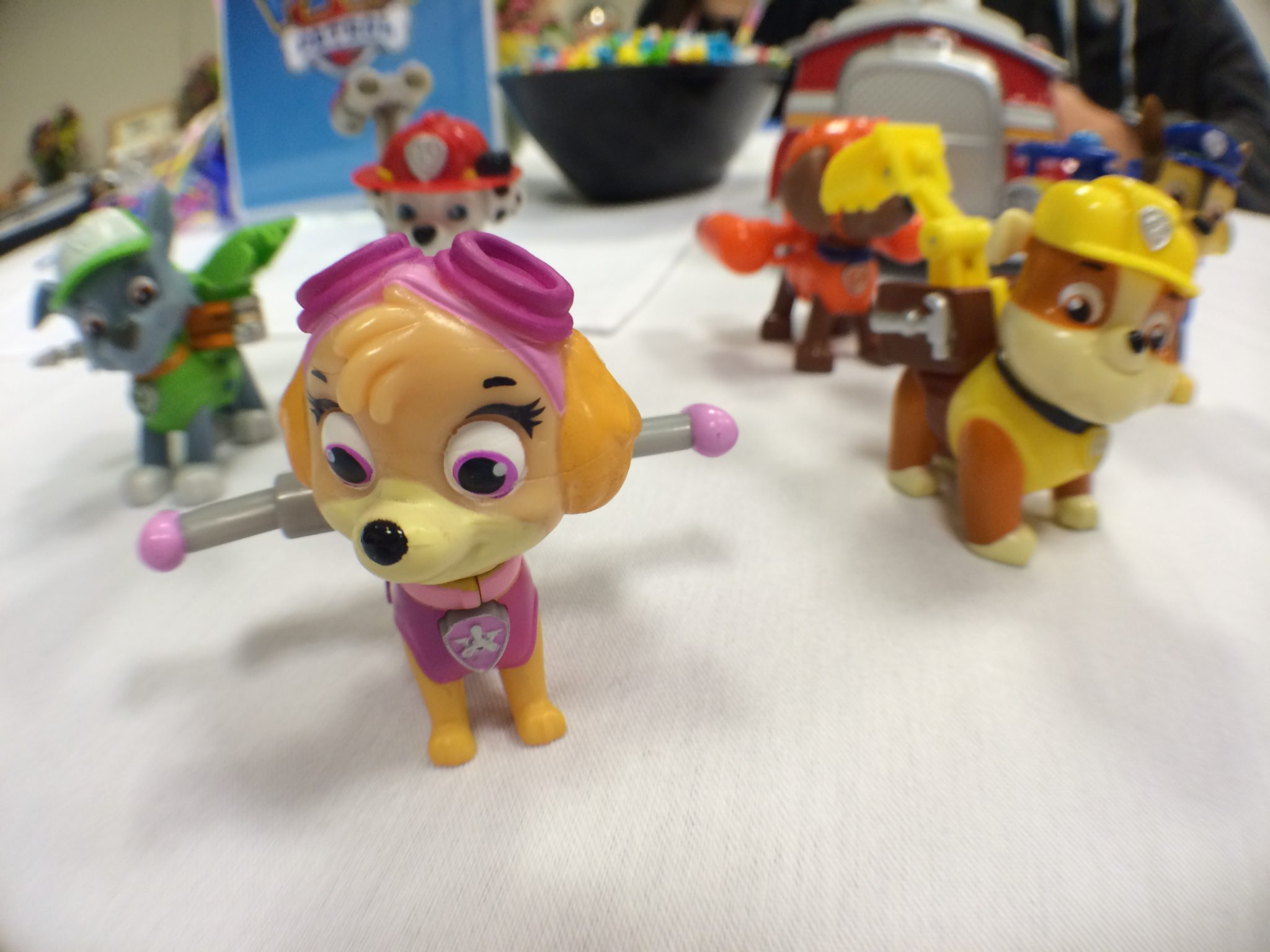 Skye Paw Patrol toys from Spinmaster – ToyQueen com